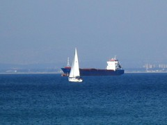 Sails in Haifa Bay - מפרשים במפרץ חיפה (yoel_tw) Tags: sails sail haifa חיפה בתגלים haifabay מפרש מפרץחיפה a3300 מפרשים canonpowershota3300