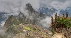 Machu Picchu Panoramablick auf Huayna Picchu im Nebel mit Agave (Bleiente) Tags: peru southamerica inca ruins terraces inka unesco ruinas agave machupicchu unescoworldheritage guardhouse ruinen weltkulturerbe huaynapicchu terassen amricadelsur patrimoniodelahumanidad sdamerika wachhaus bancal