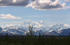 Denali from Parks Highway_2557