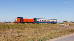 Regional de Bragado (Nohab0100) Tags: argentina train tren railway 1200 locomotive cp bragado comboio bl locomotiva mechita ferrobaires brissoneaulotz
