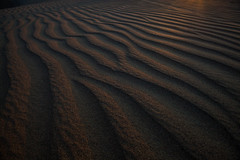 _MG_8099.jpg (tmo-photo) Tags: sunset shadow peru southamerica sunrise photographer desert sandboarding oasis ica huacachina dunebuggy thomasobrien snaddune tmophoto