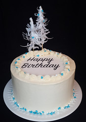 Winter cake (ldeandyment) Tags: cake cakedecorating whimsical custom christmas snowy waferpaper winter birthday white