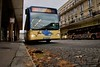 IMG_1406 - Bus dell'Arte D.AUTHOUART en avant plan et JACE en second plan - Rue de Paris - Le Havre, Seine-Maritime (76) - ©BL - Nov. 2016