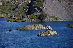 imgp3747 (Mr. Pi) Tags: lake andes island rocks mountains chile torresdelpaine hills patagonia nationalpark lagunalospatos