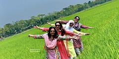 Bangladesh (sajan-164) Tags: faridpur kuliarchar kishoreganj bangladesh paddyfield green nature nari vumi earth oldbrahmaputra river sajan164 labanya poppy yasmin khanjona outdoor explored