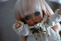Close-up without majoojoo! (~Because You're Here~) Tags: bjd ball jointed doll fairyland pukifee cony