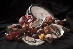 Nature Morte (nesnetsirhc) Tags: oyster fertility strawberry rotten renaissance stilleben fruit nature