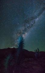 La naturaleza y el universo (lpcortesfotografias) Tags: espacio universo cosmo astrofotografia sonya58 universe milkyway estrellas longexposure longexpo largaexposicion nature nightscape