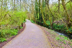 DSC_6741-Edit (Cycling Saint) Tags: nikond600nikkor1635f4vr sthelens blackbrook merseyside