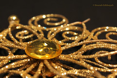Gold Star (Nourah.A.Edhbayah (Super Flower♥إظبيه)) Tags: gold kuwait nourah abdullah edhbayah q8 نوره عبدالله اظبيه الكويت ذهب ذهبي