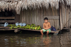 Visit Iquitos (Geraint Rowland Photography) Tags: fruit banana bananas bananaboy beleniniquitos peru southamerica belenmarket amazon theamazonriverinperu wwwgeraintrowlandcouk visitiquitos visitperu visitsouthamerica geraintrowlandphotography water huts poverty climate flooding canon