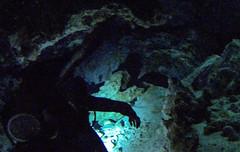 Tulum Dos Ojos Cenote dive
