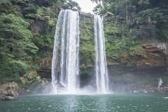 Palenque Misol Ha Falls-6