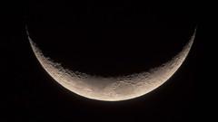 Young Crescent Moon (atgc_01) Tags: lumix lx3 moon crescent afocal celestron xlt 102 refractor