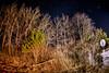 Night Sky and Headlights (Phil Roeder) Tags: jacksoncounty iowa trees night nightsky stars longexposure canon6d canon15mmf28 canonef15mmfisheye