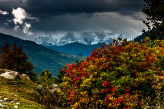 Beautiful Svaneti (Фифо) Tags: caucasus kavkaz svaneti georgia autumn autumncolors clouds colors colorful mountains mountain mountaineering mountainsineurope beautiful nature landscape view valley mazeri saqartvelo mestia october light lights кавказ сванети грузия есен есенни цветове цветно облаци планина планини планините красота пейзаж природа мазери местиа октомври natural scenery