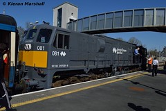 081 at Ballinasloe, 8/4/17 (hurricanemk1c) Tags: rpsi marbletribesman 1335galwaykilkenny railways railway train trains irish rail irishrail iarnród éireann iarnródéireann 2017 generalmotors gm emd 071 081 ballinasloe