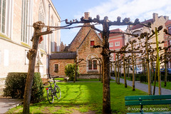 #bicicleta #bicycle #bike #2016 #brujas #brugge #bruges #bélgica #belgium #ciudad #city #viajar #travel #viaje #trip #paisaje #landscape #photography #photographer #picoftheday #sonystas #sonyimages #sonyalpha #sonyalpha350 #sonya350 #alpha350 (Manuela Aguadero) Tags: landscape trip brujas city sonystas 2016 sonya350 sonyimages ciudad brugge bélgica viajar bike bicycle picoftheday belgium photography sonyalpha sonyalpha350 bicicleta paisaje photographer alpha350 bruges viaje travel