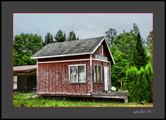 Splattered Cabin (the Gallopping Geezer '4.4' million + views....) Tags: building structure roadtrip northernmichigan upnorth upperpeninsula up rural smalltown country countryside canon 5d3 tamron 28300 geezer 2016 cabin splattered weathered decay decayed worn faded old
