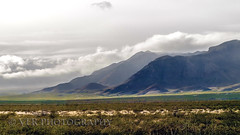 Winter variables (VFR Photography) Tags: whitesands donaañacountry lascruces nationalmonument missilerange sanandresmountains sanaugustinpass desert cloud clouds winter rain rainy weather squall squalls us70 road roads highway70 newmexico unitedstates