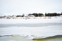 Chena river // Cold Temperature Winter Snow Outdoors Nature Frozen Ice Day Tranquil Scene Beach Clear Sky No People Beauty In Nature Scenics Tranquility Tree Polar Climate Water Frozen Lake Sky at Chena River (spieri_sf) Tags: coldtemperature winter snow outdoors nature frozen ice day tranquilscene beach clearsky nopeople beautyinnature scenics tranquility tree polarclimate water frozenlake sky