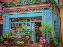 2017-04-06_FlowerShopDaily96-365 (vickievilla) Tags: astorga caminodesantiago spain flowers store flowershop photopainting topaz