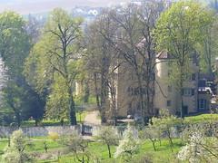 Mühlhausen-Enz-Rennaisanceschloss (thobern1) Tags: enzschleife enz badenwürttemberg germany enzkreis mühlhausen flussschleife schloss castle chateau