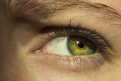 Gold Eye (Brittan Hart) Tags: eye green angry close up people