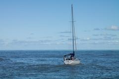 adriatico (lucarino) Tags: gabicce mare monte water sea ship barca vela mar adriatico adriatic italia italy