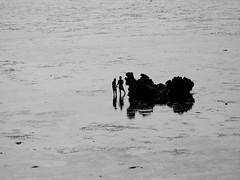 IN A WORLD OF THEIR OWN (André Pipa) Tags: pemba moçambique mozambique wimbe wimbebeach marébaixa lowtide kids crianças africa scale escala depht profundidade freedom liberté liberdade photobyandrépipa