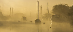 Swans in the Mist (Nick L) Tags: riverfrome dorset uk wareham landscape riverscape water river sunrise dawn yachts swans heartshape canon eos 5d 5d3 reflections