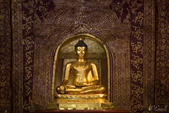Buddha Statue (PJEnsell) Tags: buddha statue gold body form enlightenment wisdom peace serenity detail faith meditation buddhist travel asia