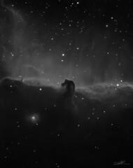 Horsehead nebula (Abel de Burgos) Tags: telescope astronomy sky deep colors nebula cluster qhy atik 460 ts130 astrophotography beauty avalon linear 460ex hydrogen baader lrgb beautiful narrowband universe cosmos qhy5l