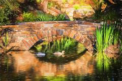 Bridge with Ducks (Wade Brooks) Tags: 2017 dukegardens april bridge ducks painting