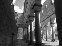 ageless (philipp h.) Tags: old bw church stone thringen alt pillar ruin kirche ruine monastery huge sw stein middleages romanic cluny kloster paulinzella mittelalter sule romanisch romanik riesig