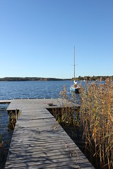 (frettir) Tags: autumn fall sweden stockholm bromma ngby