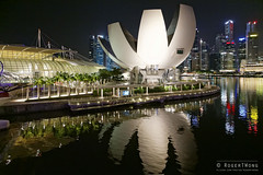 20140505-02-ArtScience Museum night reflections.jpg (Roger T Wong) Tags: building museum night reflections singapore lotus 2014 marinabay canon24105f4lis canonef24105mmf4lisusm canoneos6d artsciencemuseum rogertwong