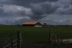 Friesland-03
