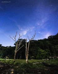 Love Song For A Vampire (retroSPecktive) Tags: longexposure travel sky bali night stars landscape nocturnal space olympus galaxy milkyway indoneisa