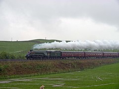 "LNER A4 Class 4-6-2 No 60009 Union of South Africa in charge of ""The Hadrian"" on a very wet afternoon approaching Gilsland on Carlisle to Newcastle line (penlea1954) Tags: africa uk england newcastle no south union railway class steam line cumbria a4 carlisle hadrian the lner 462 gilsland 60009"