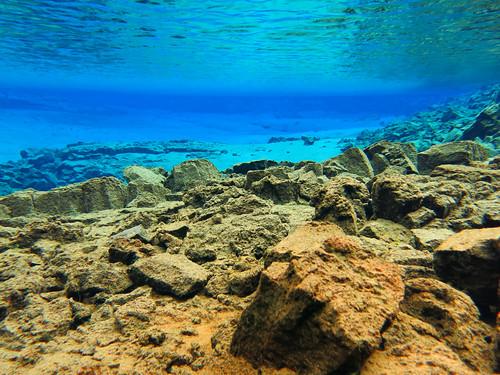 Iceland 2014 - Silfra dive - IMG_0616