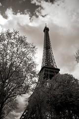 A peek at the Eiffel Tower