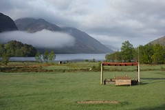Early morning in a field in Glenfinnan (matthews32) Tags: scotland highlands glenfinnan scotchmist