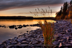 Last Daylight (jakub_sisak) Tags: autumn sunset plants ontario canada fall nature rock stone landscape photography evening bay landscapes flora rocks gloomy sundown natural dusk stones walk ominous threatening menacing fallcolors boulder greatlakes autumncolours autumncolors foliage boulders pebblebeach vegetation wildflower lakesuperior magichour rockybeach goldenhour thunderbay shrubbery nightfall twighlight lasthour fallcolours chippewa undergrowth naturalenvironment squawbay northshores chippewapark brulebay jakubsisak jakubsisakphotography brulebayroad squawbayroad