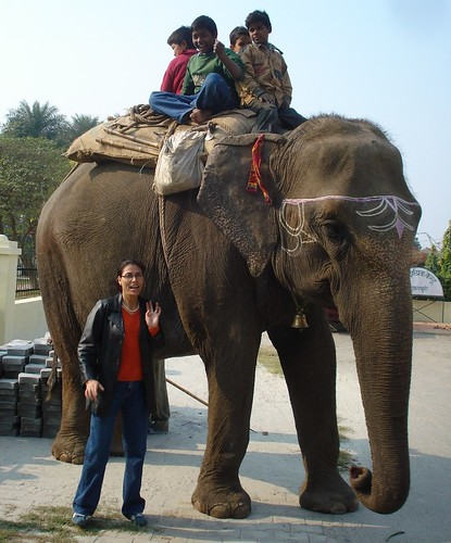 BHCH-Ricky taking the kids for an elephant ride
