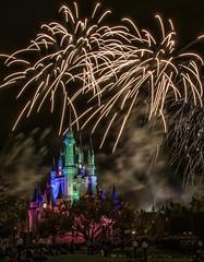 Wishes! (Judd Helms) Tags: fireworks wishes wdw waltdisneyworld magickingdom