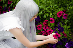 The Flower I Saw (yeshayden) Tags: flower cosplay menma    anohana anohimitahananonamaeobokutachiwamadashiranai meikohonma