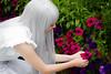 The Flower I Saw (yeshayden) Tags: flower cosplay menma 本間 芽衣子 あの日見た花の名前を僕達はまだ知らない。 anohana anohimitahananonamaeobokutachiwamadashiranai meikohonma