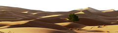 Mar de arena (vic_206) Tags: desert dunes morocco desierto marruecos dunas merzouga ergchebbi canoneos7d canon70200f28lisii