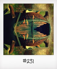 "#DailyPolaroid of 17-5-14 #231 • <a style=""font-size:0.8em;"" href=""http://www.flickr.com/photos/47939785@N05/14569538113/"" target=""_blank"">View on Flickr</a>"
